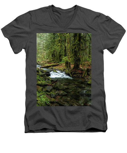 Mossy Cascade Men's V-Neck T-Shirt