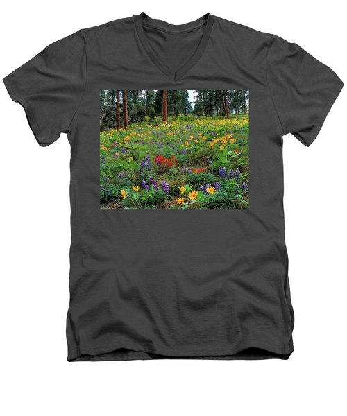 Mountain Wildflowers Men's V-Neck T-Shirt