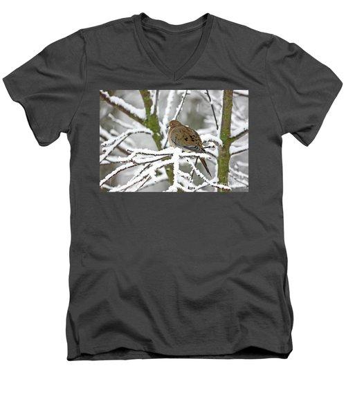 Mourning Dove In Snowstorm Men's V-Neck T-Shirt