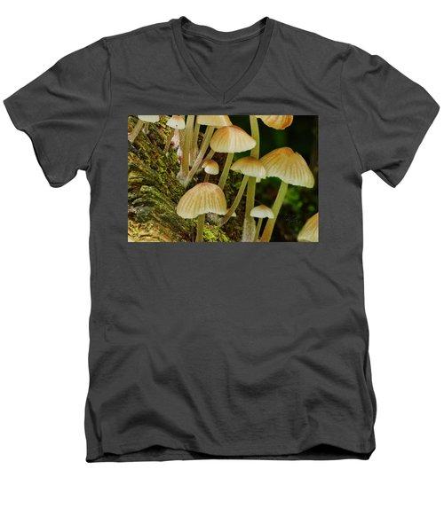Mushrooms Men's V-Neck T-Shirt