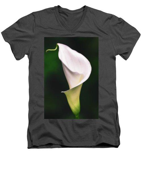 Natural Grace Men's V-Neck T-Shirt