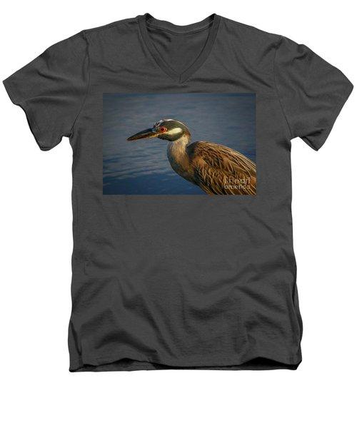Night Heron Portrait Men's V-Neck T-Shirt