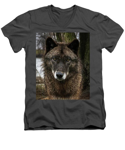 Niko Portrait Men's V-Neck T-Shirt