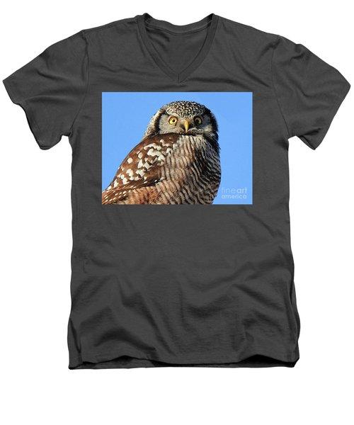 Northern Hawk-owl Men's V-Neck T-Shirt