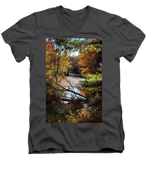October Window Men's V-Neck T-Shirt