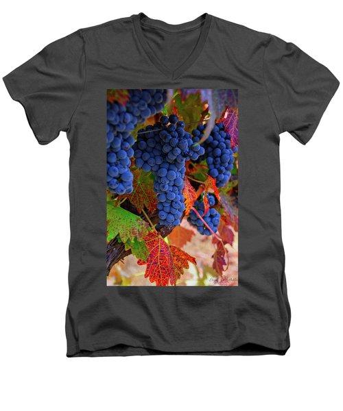 On The Vine II Men's V-Neck T-Shirt