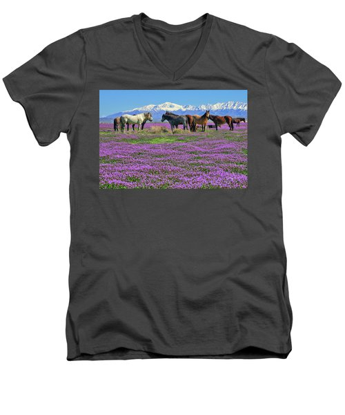 Onaqui Spring Men's V-Neck T-Shirt