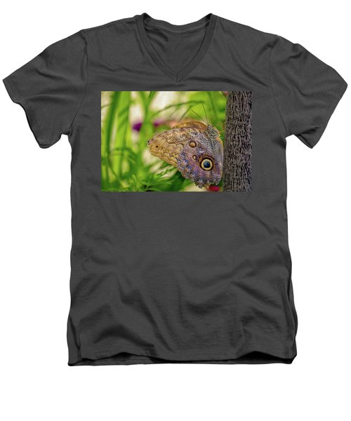 Owl Butterfly Men's V-Neck T-Shirt