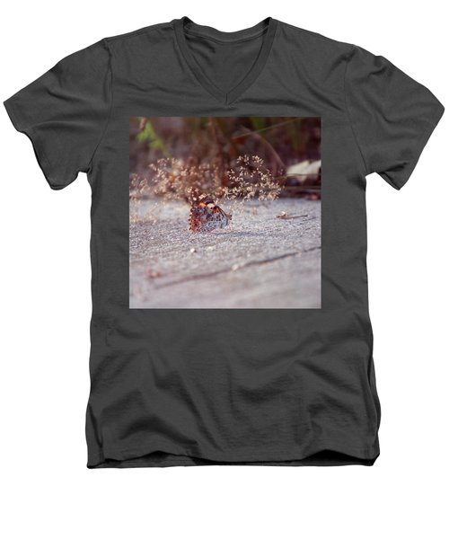 Painted Lady - Vanessa Cardui Men's V-Neck T-Shirt