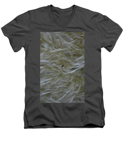 Pampas Grass And Insect Men's V-Neck T-Shirt