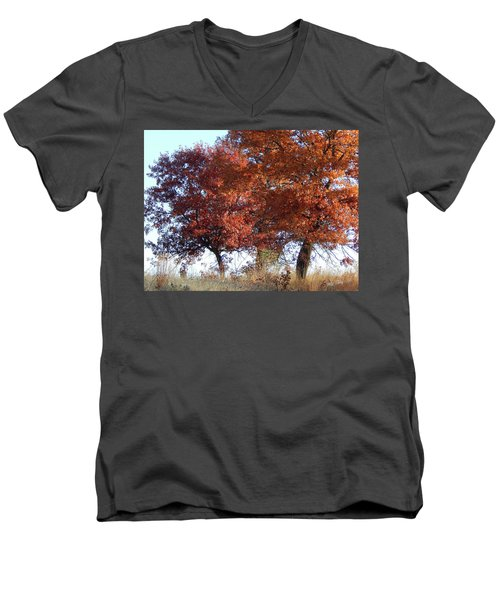Passing Autumn Men's V-Neck T-Shirt