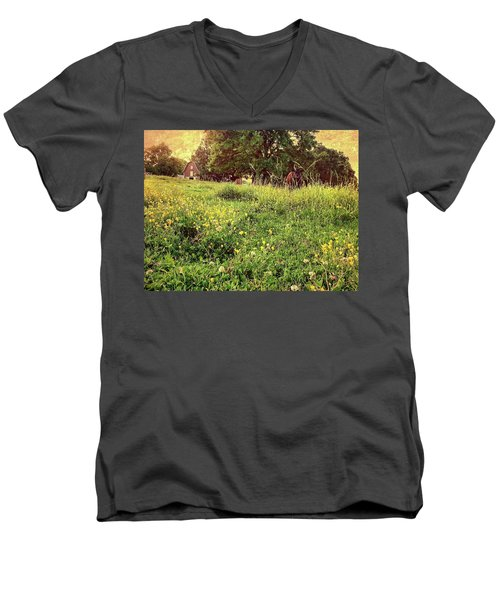 Peaceful Pastoral Perspective Men's V-Neck T-Shirt