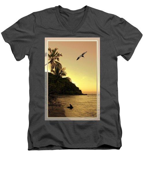 Pelican Sundown Men's V-Neck T-Shirt