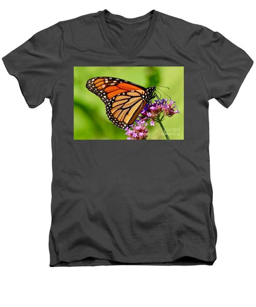 Perfect Monarch Men's V-Neck T-Shirt