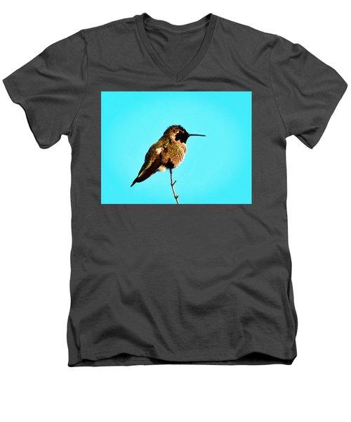 Perfect Posing Men's V-Neck T-Shirt