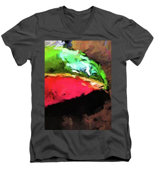 Pink And Green Watermelon Men's V-Neck T-Shirt