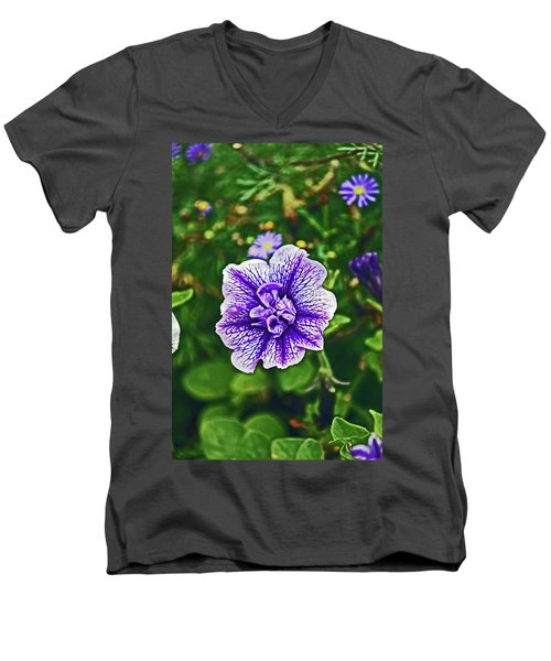 Pitlochry.  Purple Petunia. Men's V-Neck T-Shirt