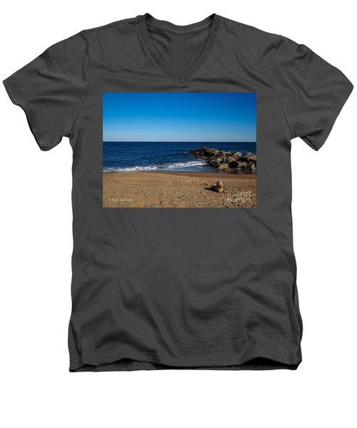 Plum Island Scene Men's V-Neck T-Shirt