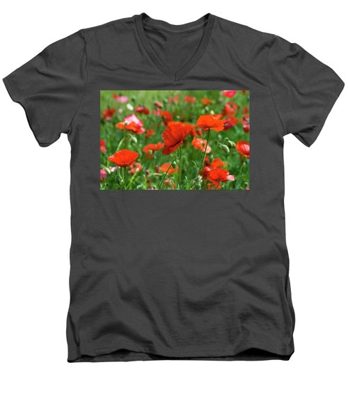 Poppies In The Field Men's V-Neck T-Shirt