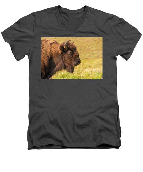 Power Head Men's V-Neck T-Shirt