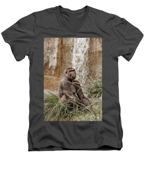 Presence Men's V-Neck T-Shirt