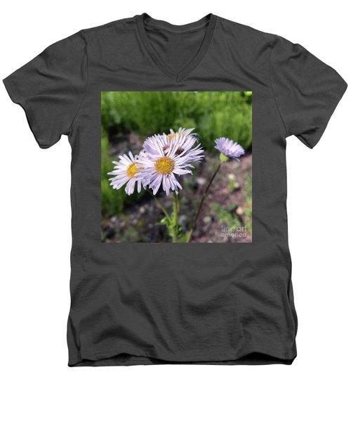Purple Fleabane 5 Men's V-Neck T-Shirt