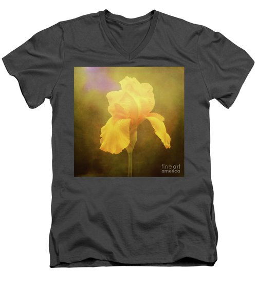 Radiant Yellow Iris With A Vintage Touch Men's V-Neck T-Shirt