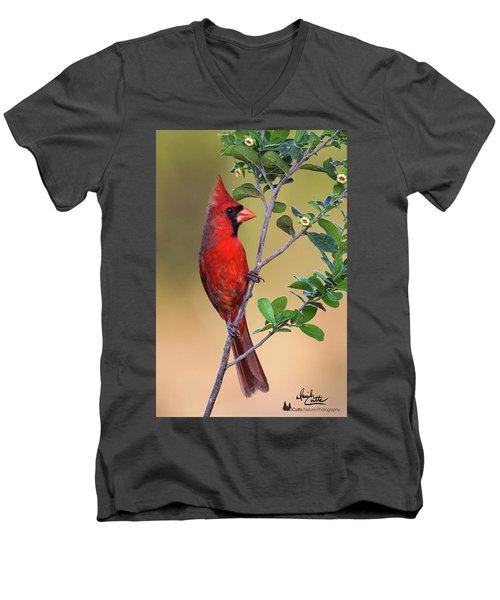 Red All Over Men's V-Neck T-Shirt