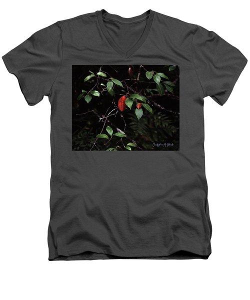 Red Leaf Men's V-Neck T-Shirt