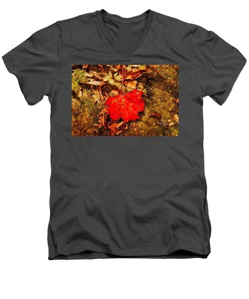 Red Leaf On Mossy Rock Men's V-Neck T-Shirt