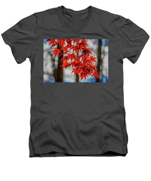 Red Leaves Men's V-Neck T-Shirt
