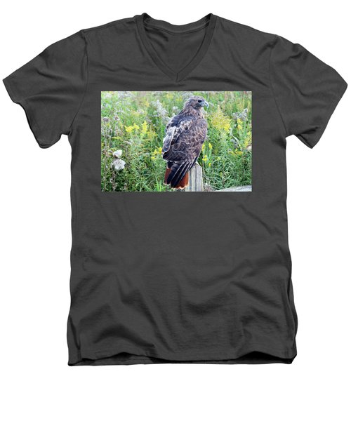 Red-tailed Hawk On Fence Post Men's V-Neck T-Shirt