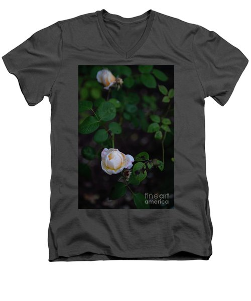 Rose Collection Men's V-Neck T-Shirt