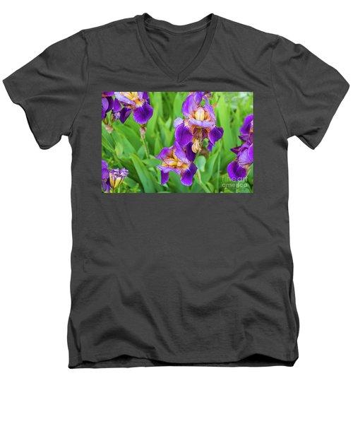 Royal Purple Irise Men's V-Neck T-Shirt