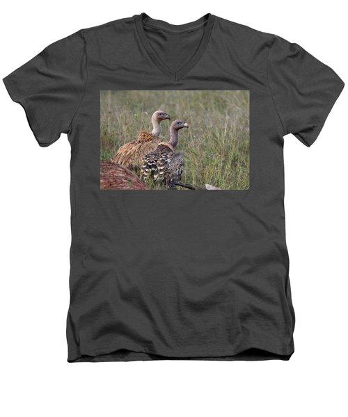 Ruppell's Griffons Men's V-Neck T-Shirt