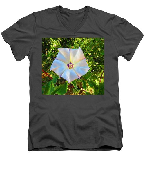 Men's V-Neck T-Shirt featuring the photograph Sacred Datura In The Golden Hour by Judy Kennedy