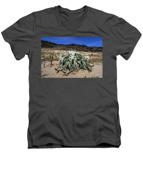 Star Lilys Its Springtime In The Rockys Men's V-Neck T-Shirt