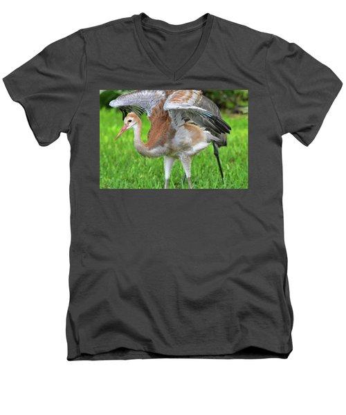 Sandy Crane Shows New Feathers Men's V-Neck T-Shirt