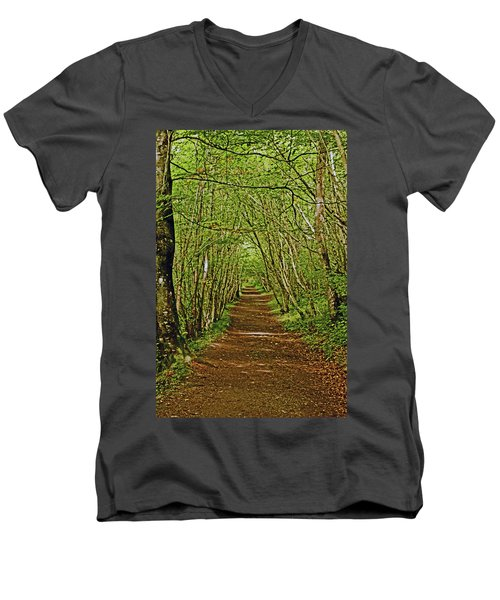 Scotland. Killiecrankie. Path Through The Trees. Men's V-Neck T-Shirt