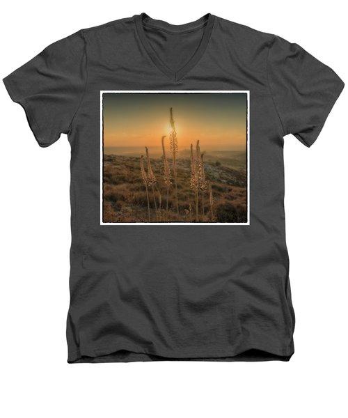 Sea Squills At Sunset Men's V-Neck T-Shirt