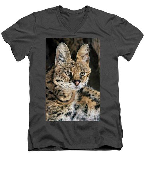 Serval Portrait Wildlife Rescue Men's V-Neck T-Shirt