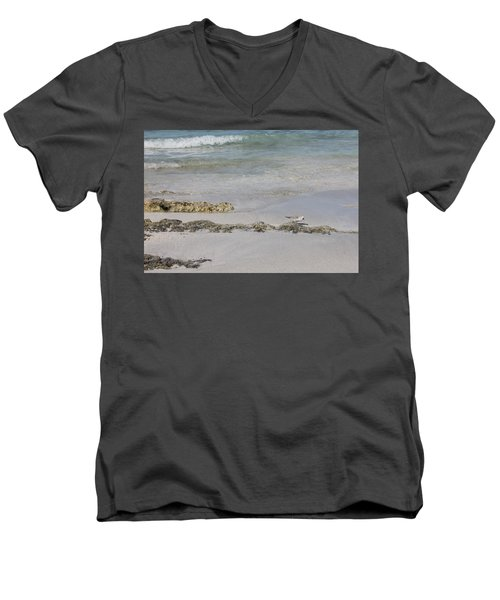 Shorebird Men's V-Neck T-Shirt