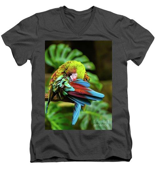 Shy Parrot Men's V-Neck T-Shirt