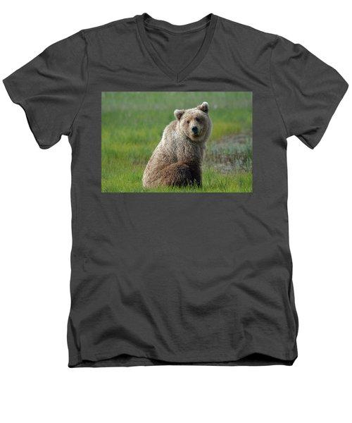 Sitting Peacefully Men's V-Neck T-Shirt