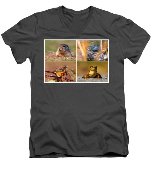 Small Animal Collage Men's V-Neck T-Shirt