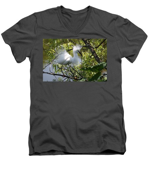 Snowy Egret 4031202 Men's V-Neck T-Shirt