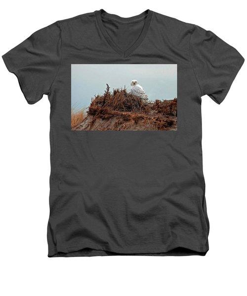 Snowy Owl In The Dunes Men's V-Neck T-Shirt