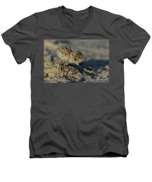 Snowy Plover On The Hunt Men's V-Neck T-Shirt