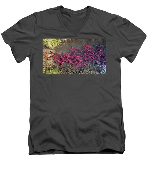 Men's V-Neck T-Shirt featuring the photograph Spawning Kokanee Salmon by Wesley Aston