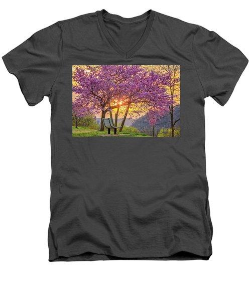 Spring Bench In Beaver 2 Men's V-Neck T-Shirt